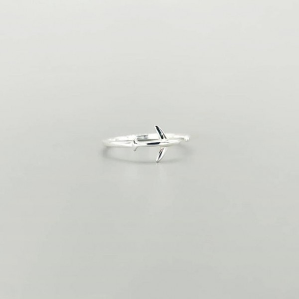 Minimal Airplane Ring